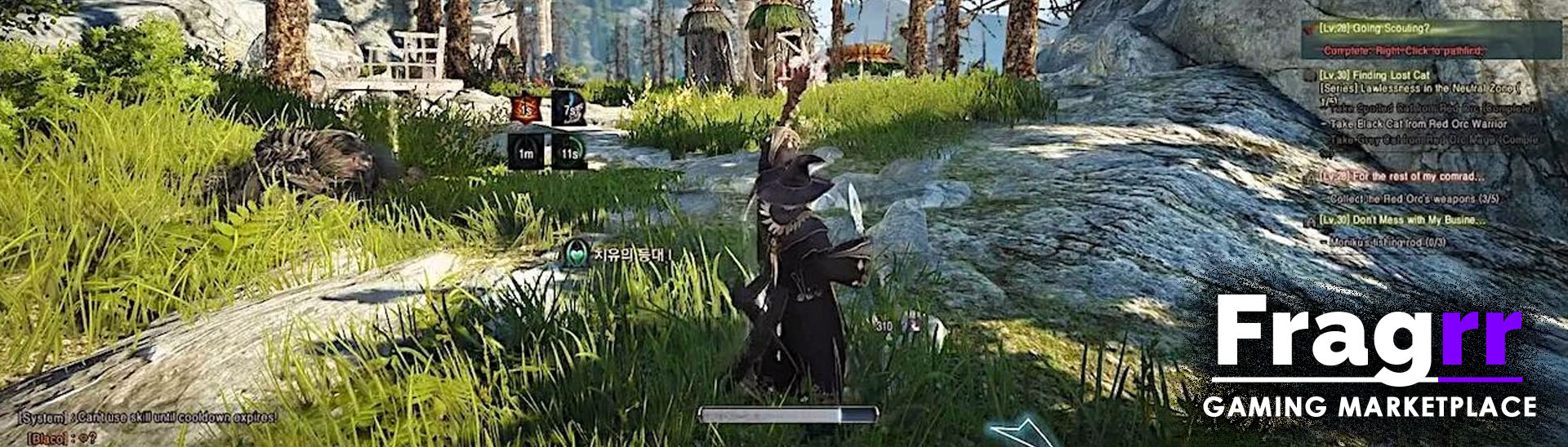 cheap Black Desert Online accounts for sale
